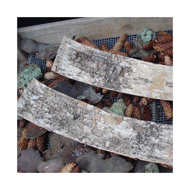 Birkebark i plader