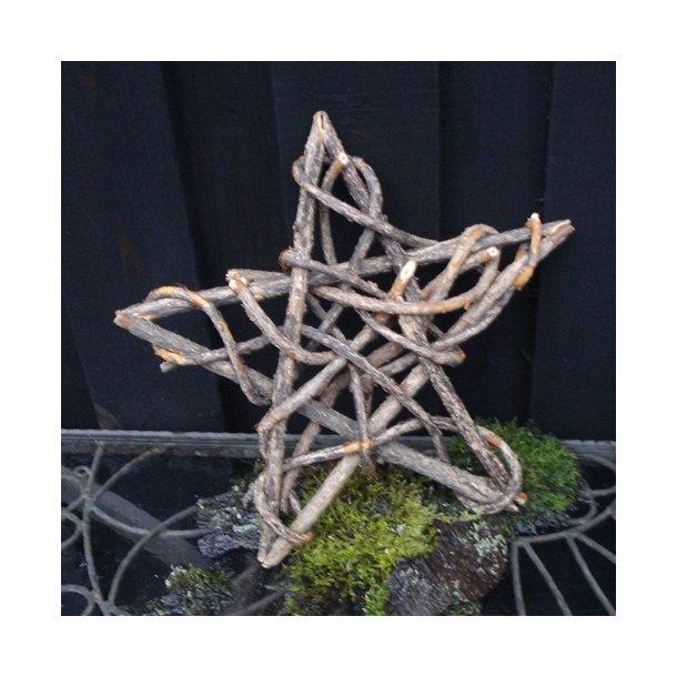 Stjerne i grene