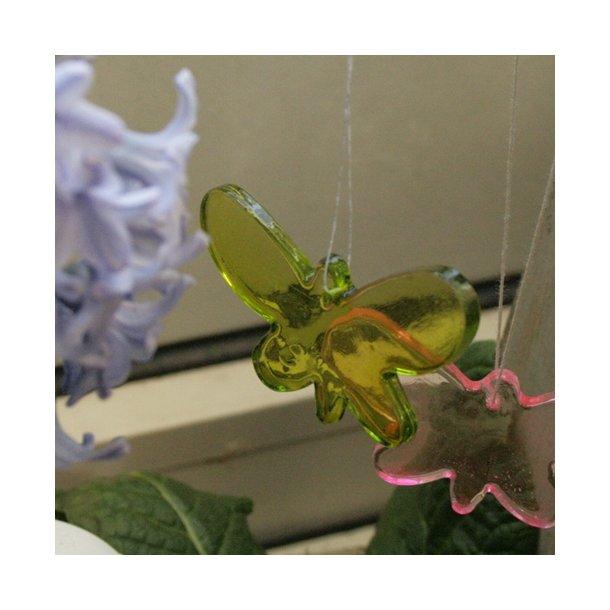 Sommerfugl i glas (lime)
