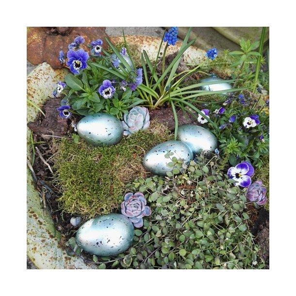 Æg, blå (24 stk.)